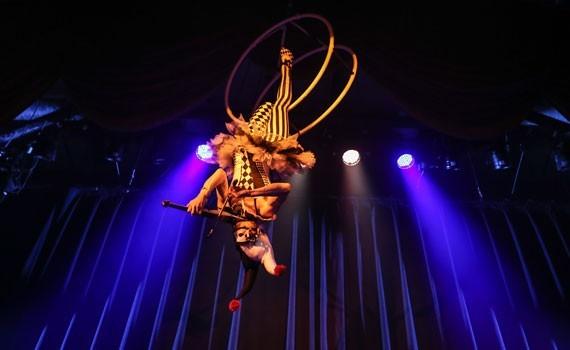 A Janice Martin Cirque Show